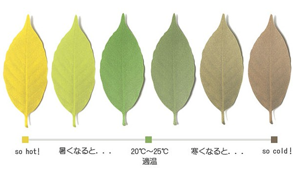 leafthermometer03